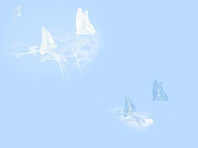 White butterflies ppt backgrounds