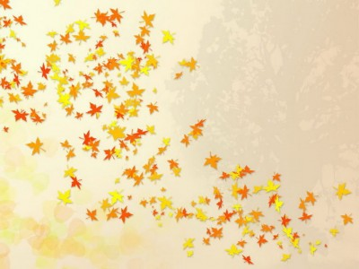 Falling leaves nature template ppt backgrounds
