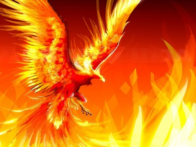 Fire Phoenix ppt backgrounds