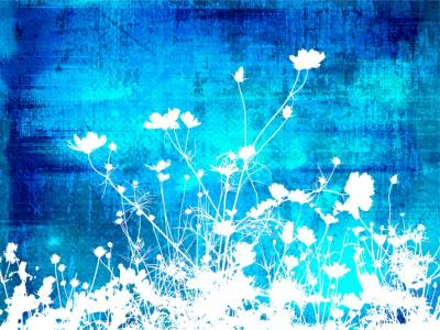 Blue white floral abstract textures ppt backgrounds