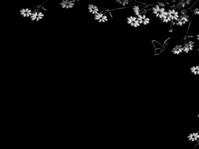 Flowers and butterflies black frame ppt backgrounds