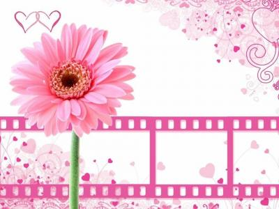 Pretty pink flower with film clips ppt backgrounds