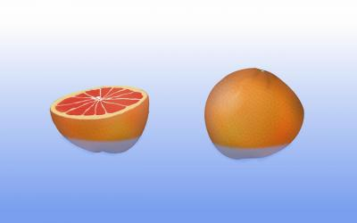Two Grapefruits  ppt backgrounds