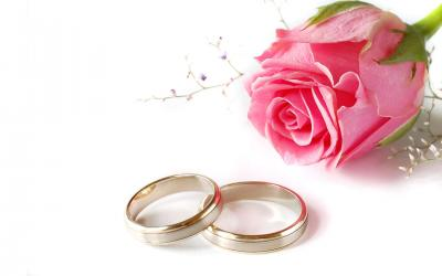 Wedding pink rose and rings ppt backgrounds