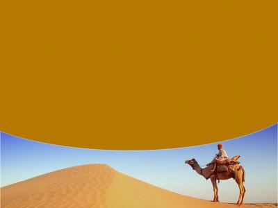 In the Desert With a Camel Ride ppt backgrounds